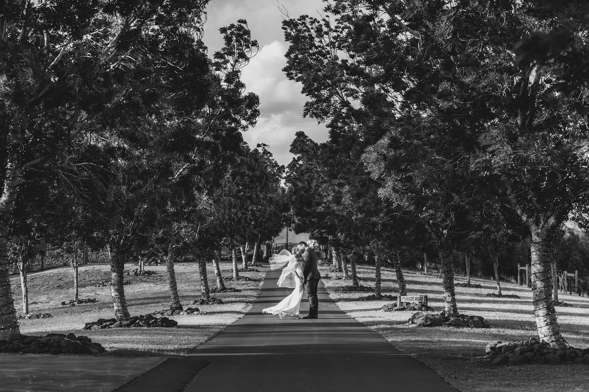 181206 0956bw preston peak wines winery functions private road dramatic emotive lane couple wedding