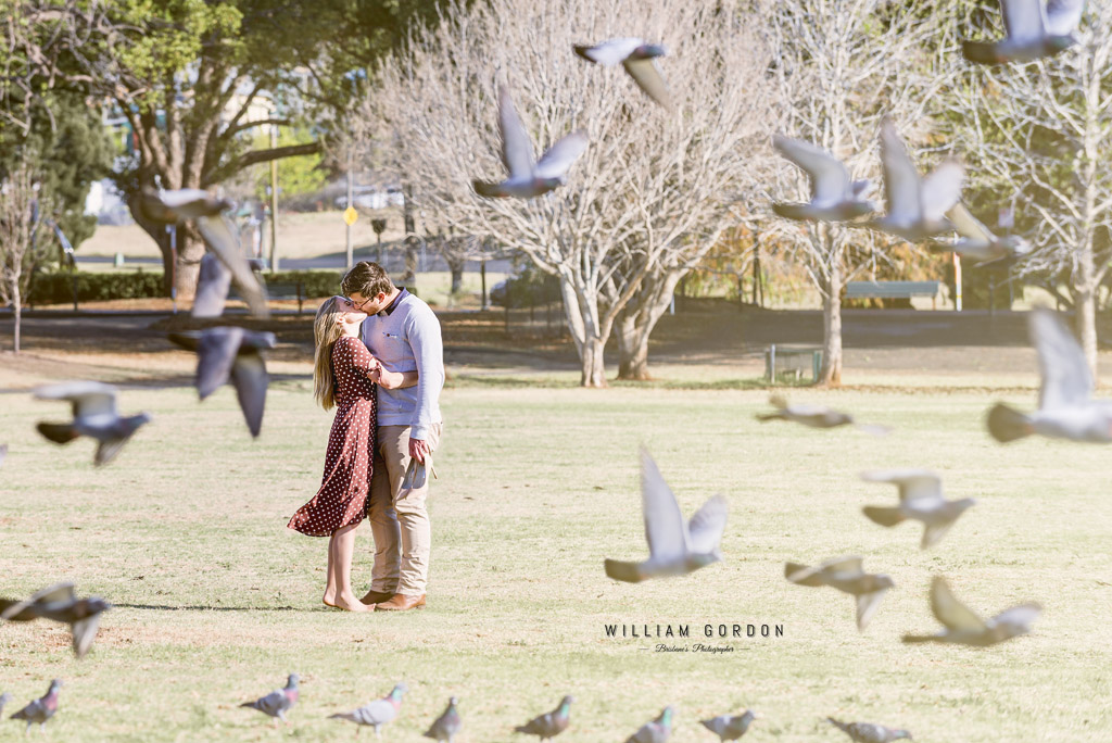 180908 0082 toowoomba engagement couple shoot inspiration city urban queens park pigeons birds